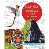 Natura: Coloreaza dupa numere, editura Didactica Publishing House