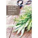 Gradina mea cu plante medicinale - Serge Schall, editura Rao
