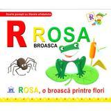 R de la Rosa, Broasca - Rosa, o broasca printre flori (necartonat), editura Didactica Publishing House