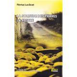 La solitude des pierres. La fissure - Flavius Lucacel, editura Limes
