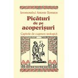 Picaturi de pe acoperisuri - Ieromonahul Antonie Romaios, editura Egumenita