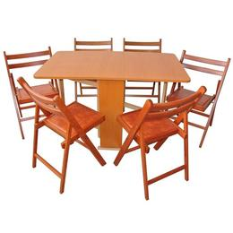 Set masa pliabila PRACTIC 6 scaune, cires