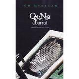 Oglinda aburita - Ion Muresan, editura Charmides