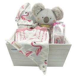 Set Cadou bebelusi - Koala - Bestfam