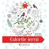 Culorile iernii, editura Didactica Publishing House