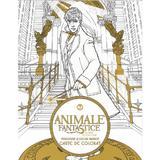 Animale fantastice si unde le poti gasi - Carte de colorat, editura Grupul Editorial Art