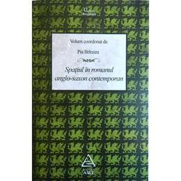 Spatiul in romanul anglo-saxon conteporan - Pia Brinzeu, editura Grupul Editorial Art
