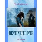 Destine triste - Teo Moldovan, editura Ecou Transilvan