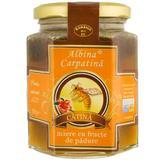 Miere Catina cu Fructe de Padure Albina Carpatina, Apicola Pastoral Georgescu, 360g