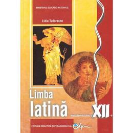 Latina cls 12 - lidia tudorache