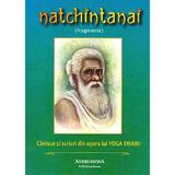 Natchintanai - Yoga Swami, editura Andromeda