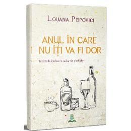 Anul in care nu iti va fi dor - Louana Popovici, editura Berg