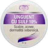 Unguent cu Sulf 10% Ceta, 40g