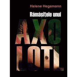 Ramasitele unui Axolotl - Helene Hegemann, editura Litera