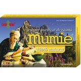 Extract Purificat de Rasina Mumie Damar General, 60 tablete