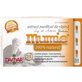 Extract Purificat de Rasina Mumie Damar General, 30 capsule