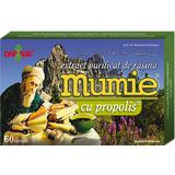 Extract Purificat de Rasina Mumie cu Propolis Damar General, 60 tablete
