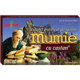 Extract Purificat de Rasina Mumie cu Castan Damar General, 30 tablete