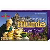 Extract Purificat de Rasina Mumie cu Pantocrin Damar General, 30 tablete