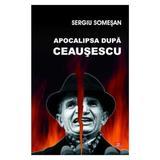 Apocalipsa dupa Ceausescu - Sergiu Somesan, editura Vremea