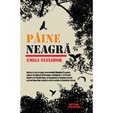 Paine neagra - Emili Teixidor, editura Meteor Press