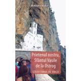 Prietenul nostru, Sfantul Vasile de la Ostrog. Izbavitorul de frica - Danion Vasile, editura Areopag