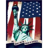 Magnet frigider - Statue of Liberty - ArtGarage