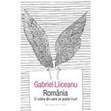 Romania, o iubire din care se poate muri - Gabriel Liiceanu, editura Humanitas
