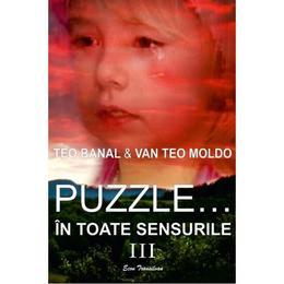 Puzzle... in toate sensurile Vol. 3 - Teo Banal, Van Teo Moldo, editura Ecou Transilvan