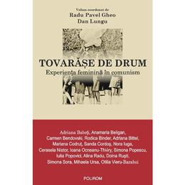Tovarase de drum - Radu Pavel Gheo, Dan Lungu, editura Polirom