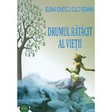Drumul ratacit al vietii - Elena Ionescu Colcigeanni, editura Betta