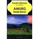 Amurg Indepartat - Sandu Catinean, editura Ecou