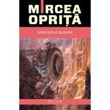 Sindromul Quijote - Mircea Oprita, editura Nemira