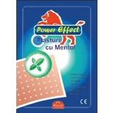Plasture Antireumatic cu Mentol FL Medical, 12X18 cm