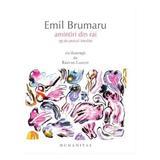 Amintiri din rai - Emil Brumaru, editura Humanitas