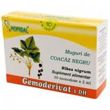 Gemoderivat Coacaz Negru Hofigal, 30 monodoze