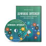 Cum sa te Promovezi Eficient în Google ADS - Adwords Intensiv, autor Secrier Alexandru editura GoldenSite