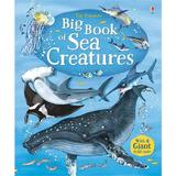 Carte despre animalele marine Big book of Sea Creatures Usborne