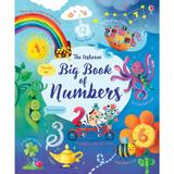 Carte despre numere Big book of Numbers Usborne