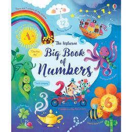Carte despre numere Big book of Numbers Usborne
