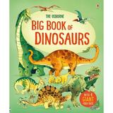 Carte despre dinozauri Big book of Dinosaurs editura Usborne