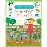 Prima mea carte despre cum cresc plantele, editura Univers Enciclopedic