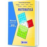 Matematica - Clasa 7 - Manual - Mihaela Singer, editura Sigma