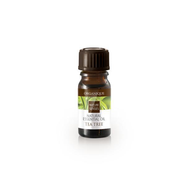 Ulei aromatic ceai, Organique, 7 ml imagine produs