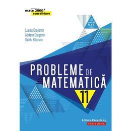 Probleme de matematica - Clasa 11 - Consolidare - Lucian Dragomir, editura Paralela 45