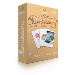 Carti de joc Montessori-Pamant, aer, apa Gama