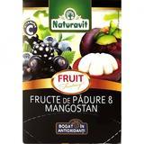 Ceai Fructe de Padure si Mangostan Fantasy Naturavit, 15 doze x 1,5 g