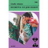 Secretul lui Joe Elliot - Linda Adams, editura Alcris