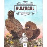 Animale salbatice in natura: Vulturul - Renne, editura Didactica Publishing House