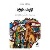 Life Stuff sau invataturi pentru Andreea - Cezar Parlog, editura Tracus Arte